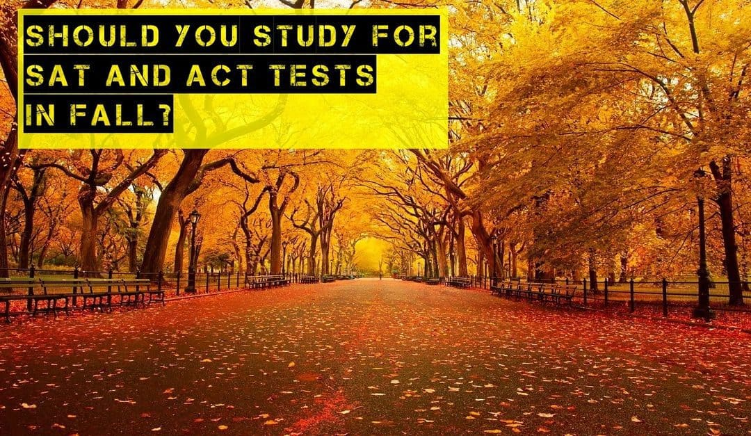 Are November and December Good Months to Study for the SAT and ACT Tests?